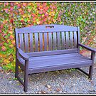 Beckoning Brown Bench by Deb  Badt-Covell