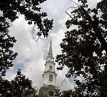 Steeple Canopy Artistic Photograph by Shannon Sears by twobrokesistas