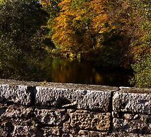Elgin, Oldmills Brig in Autumn. by JASPERIMAGE