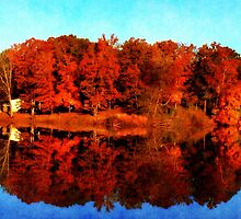 Mirrored Autumn by Ginger  Barritt