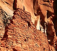Native American Cliff Dwelling and Canyon Wall by Roupen  Baker