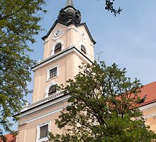 Castle of Rzeszow. by FER737NG