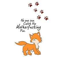 """Looking For Alaska - """"No One Can Catch the Motherfucking Fox"""" John Green [Apparel & Sticker] Photographic Print"""