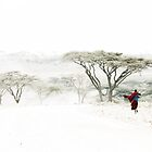 Maasai Mara country, Tanzania by Hannah Nicholas