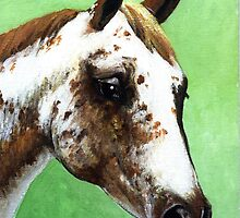 Appaloosa Headshot Horse by Oldetimemercan