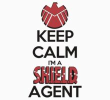 Keep Calm I'm a Shield Agent by SwordStruck