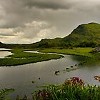 Killarney National Park by Regina Hoer