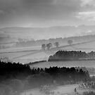 View from Scott's View, Scottish Borders by Iain MacLean