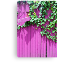 Pink Fence and Foliage Canvas Print