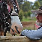 A love of horses. by Jeanette Varcoe.