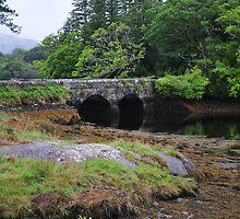 Bridging the inlet by JurassicJohn