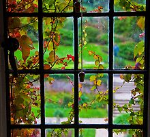 Ireland. Killarney. Muckross House. Window. by vadim19