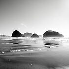 Oregon coast by SandrineBoutry