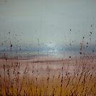 Lakes edge by Redviolin