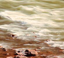 White Water Raoids, Colorado River by Roupen  Baker