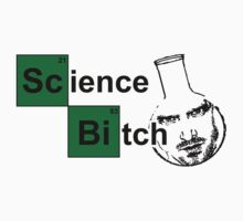 Breaking Bad - Science Bitch by nektarinchen
