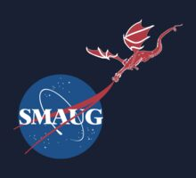 "Smaug ""Meatball""  Kids Clothes"