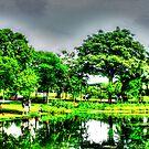 Botanic Garden Singapore 2013 by William  Teo Photography