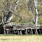 Old Bridge - out of action by saltbushbill