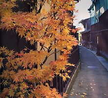 Japanese lane way in Autumn light by DerekEntwistle