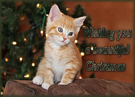 Wishing You A Beautiful Christmas by Vickie Emms