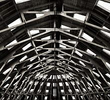 Symmetrical Timber.  by Dave Hare