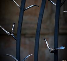 Doves on the gates by barrylee