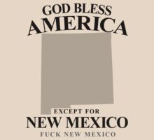 God Bless America Except For New Mexico by crazytees