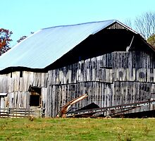 Jasper ~ Mail Pouch Tobacco Barn  by DCCaptured