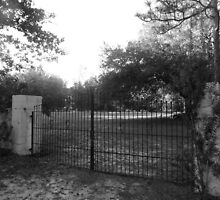 The Gates to Eternity Artistic Photograph by Shannon Sears by twobrokesistas