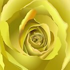 Yellow Roses by TinaGraphics