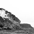 Fossil Bluff - Tasmania by Michelle Walker