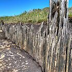Old sea wall  by collpics