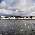 Galway City  by Tomasz-Olejnik