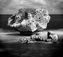 Point Peron rock by BeninFreo