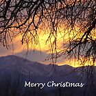 Merry Christmas (2) by dfrahm