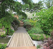 Bridge across Waterfall Garden by Kathie  Chicoine