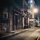 Alley - New York City by Vivienne Gucwa