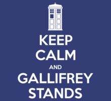 KEEP CALM and Gallifrey stands by Golubaja
