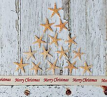 Merry Christmas Starfish Tree by Debbie Hartley
