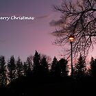 Merry Christmas (5) by dfrahm