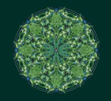 Flower of life mandala by Manafold Art