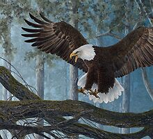 WINGS OF PRECISION - BALD EAGLE by Martin  Wilneff
