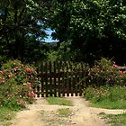 Wooden Gate And Flowers by Noel Elliot