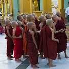 Novices at the Shwedagon Pagoda by Mark Prior