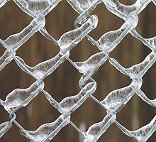 Ice on the Fence  by Zach Hawn