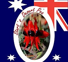 Sturt's Desert Pea by Just Aussie