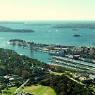 Sydney Harbour from Centrepoint Tower by marshstudio