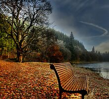 The River Tay, Dunkeld, Scotland by DAVY NELSON