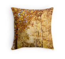 Autumn colors, riverside walk, November 2103  Throw Pillow